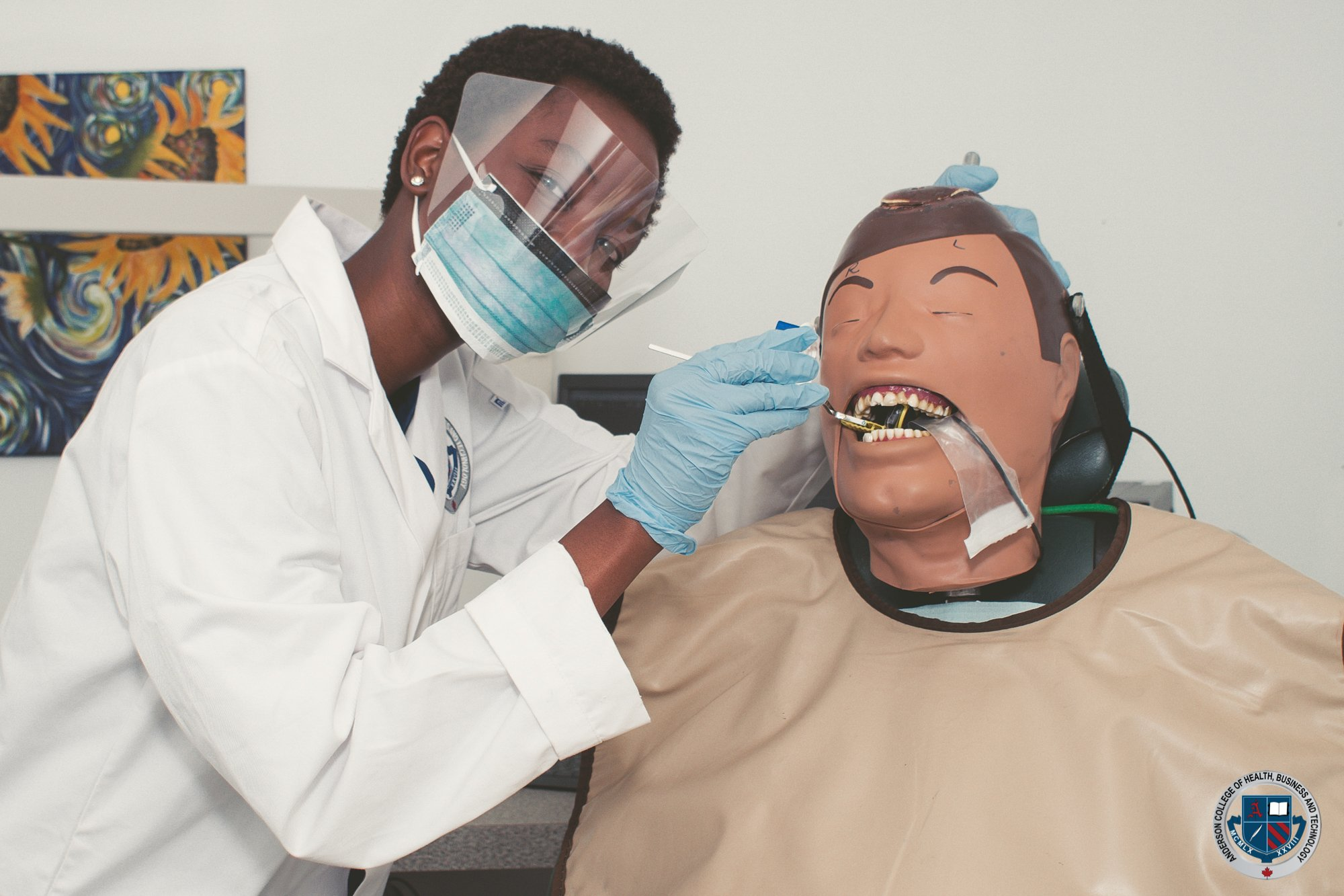 Intra Oral Dental Assistant Training at Anderson College